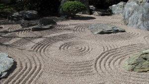 garden-forgive-crop-resize
